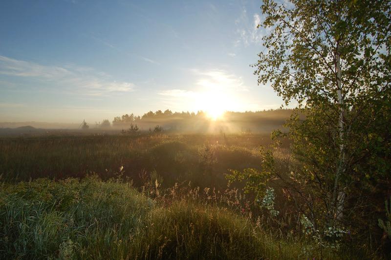 ярославская область байдарки сплав