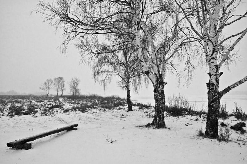 ермишь поселок озеро березы