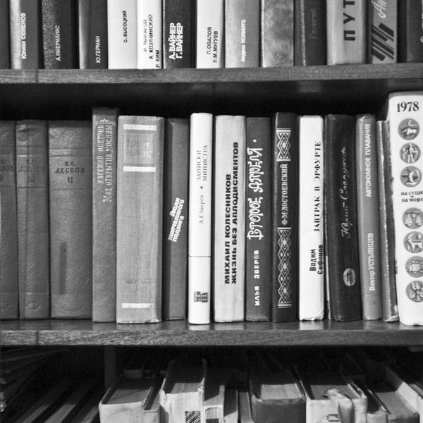 фото книги ермишь дома