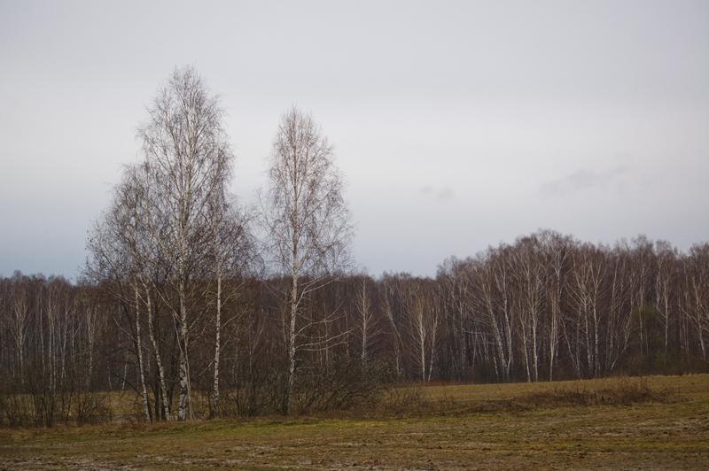 московская область маршрут похода