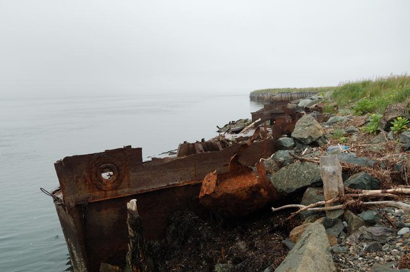 брошеные корабли фото мертвые