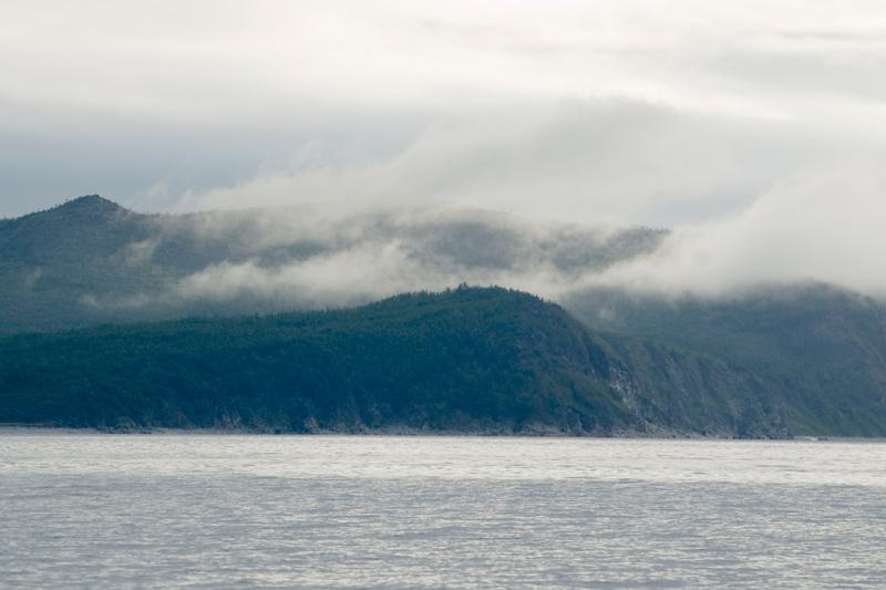 охотское море бухта гертнера