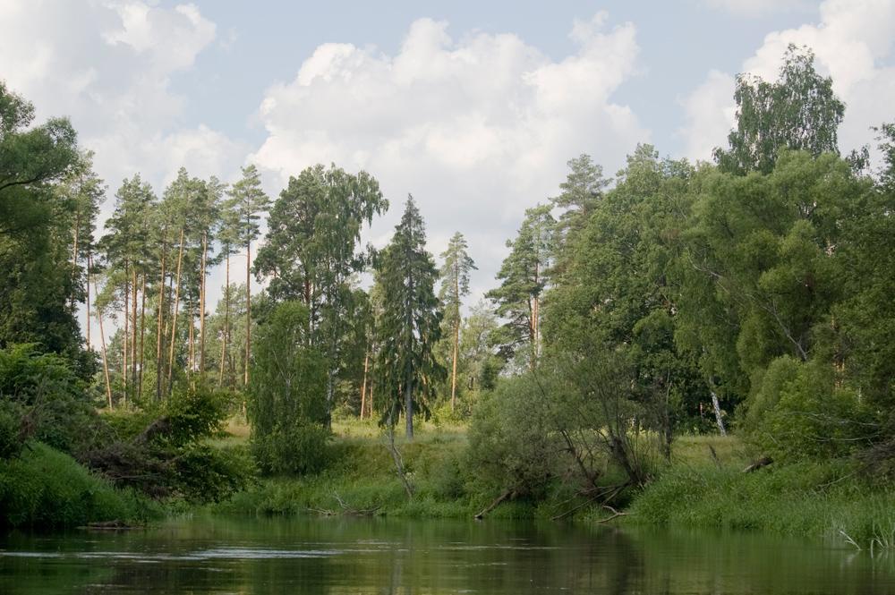 сплав по реке киржач в июне